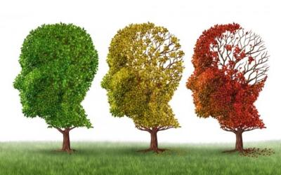 Contro l'Alzheimer, un virus che trasporta geni sani al cervello